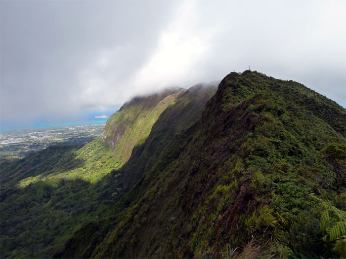 Hiking Hawaii Loa Ridge to Mount Olympus