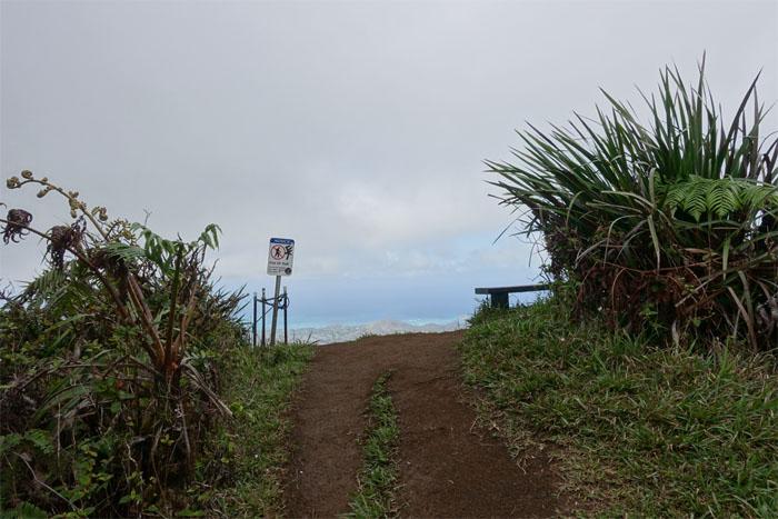 Hiking Kalani Ridge to Wiliwilinui Ridge