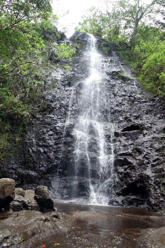 Hiking Ka'au Crater Loop