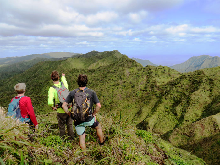 Hiking Waiahole Uka to Kipapa Ridge
