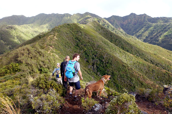Hiking Kulepeamoa Loop Trail