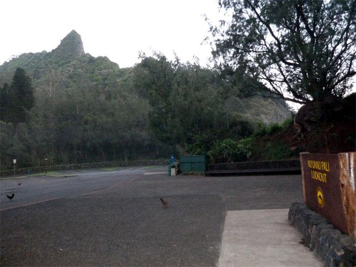 Hiking Pali Puka to Lanihuli