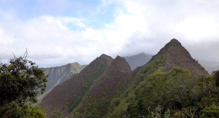 Hiking Ohikilolo to Keaau Ridge