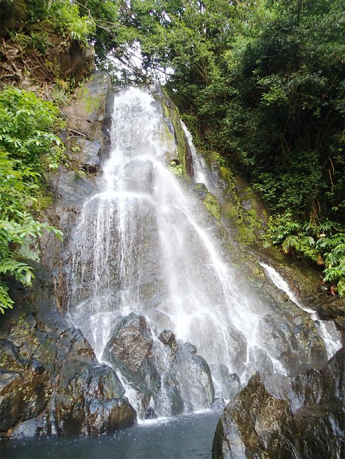 Hiking Luakaha and Likeke Falls