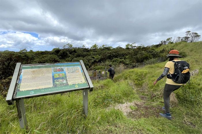 Hiking Mokuleia to Mount Ka'ala