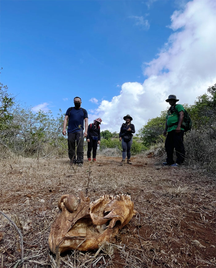 Hiking Mokuleia to Kaena Point
