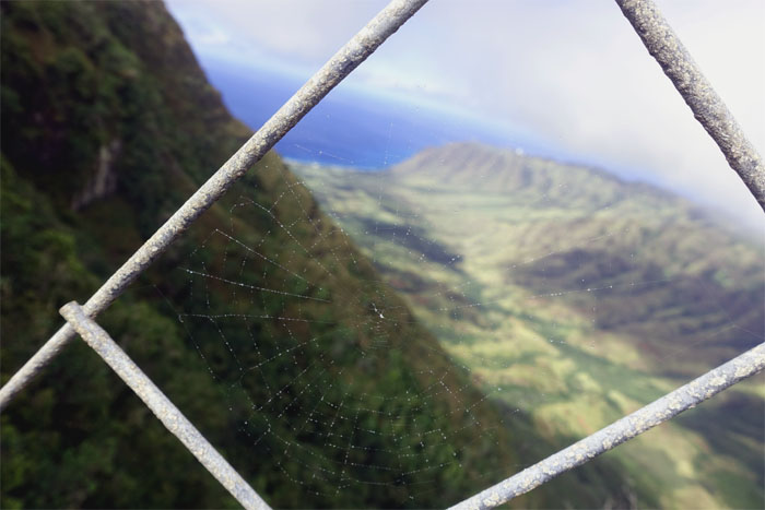 Hiking Mokuleia Trail to Upper Makua Cave