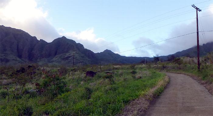 Hiking Pu'u Kawiwi to No Name Peak to Ka'ala Trail