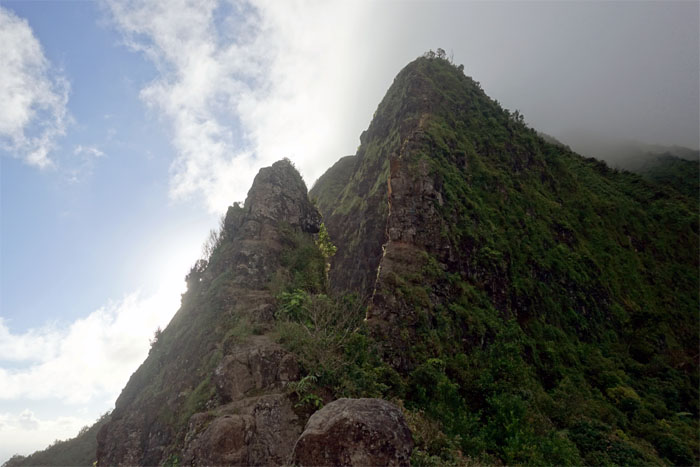 Hiking Pali Notches to Manoa Falls ( Konahuanui Windward Scout )