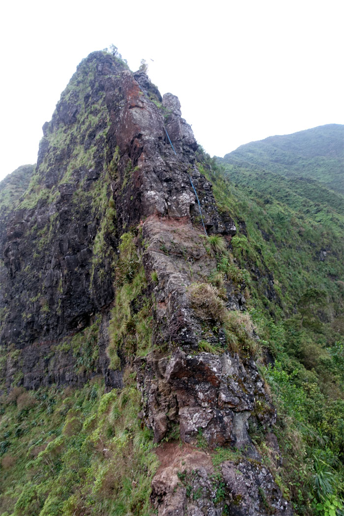 Hiking Pali Notches to Wiliwilinui Ridge Trail