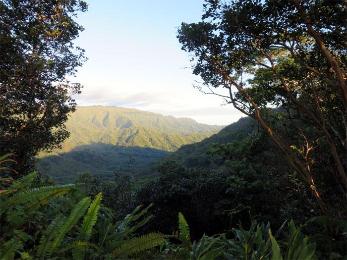 Hiking Waikane Trail to Waiahole Uka Trail