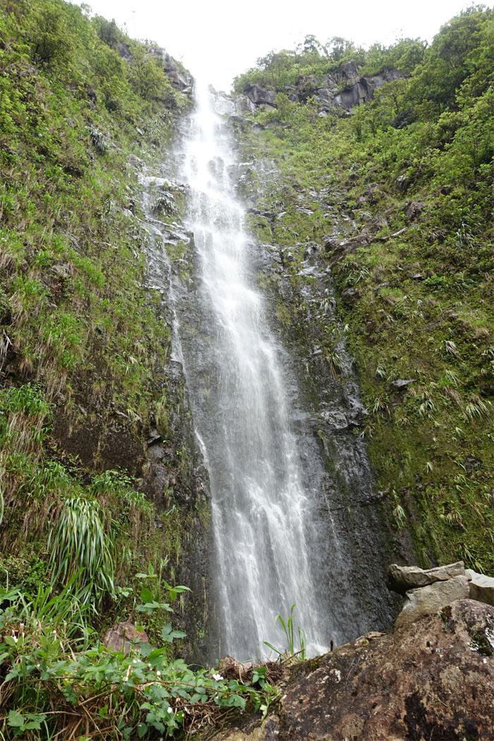 Hiking Pueo Falls