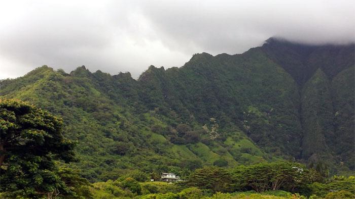 Hiking Ulimakoli Ridge ( Eleao Windward ) to Manana Ridge
