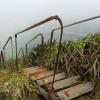 Thumbnail image for Aiea Ridge to Kulana'ahane Trail