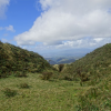Thumbnail image for Manana Trail to Aiea Ridge