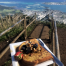 Thumbnail image for Kulana'ahane Trail to Kalihi Saddle (Powerlines)