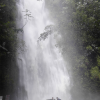 Thumbnail image for Kahuwaiiki (Waihi) and Manoa Falls
