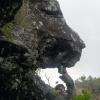 Thumbnail image for Kamiloiki Ridge to Kamehame Ridge