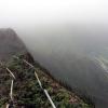 Thumbnail image for Kulana'ahane Trail to Moanalua Powerlines