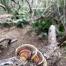 Thumbnail image for Makapu'u to Hahaione Valley