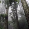 Thumbnail image for Mount Tsukuba