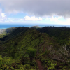 Thumbnail image for Wiliwilinui Ridge Trail