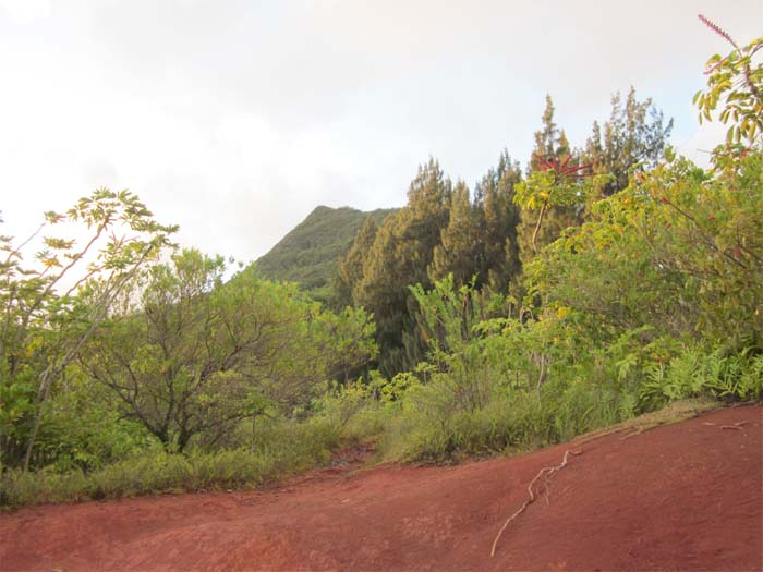 Peak of Olomana