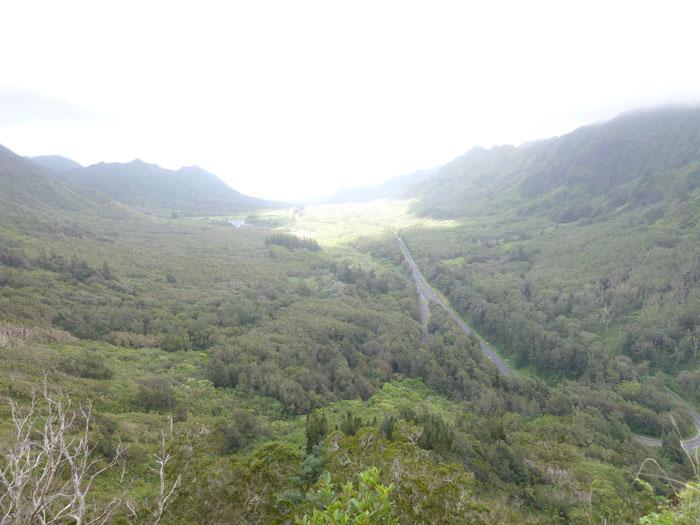 Pali Highway