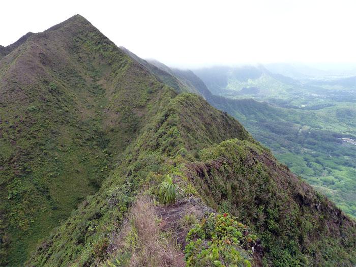 Kulepeamoa Ridge