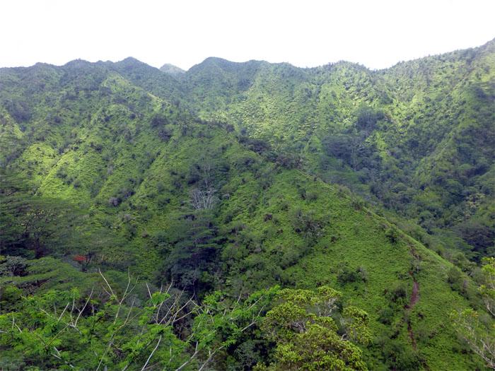 Ridge going down towards Waiakeakua Falls