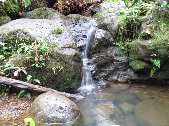 Waterfall #8?