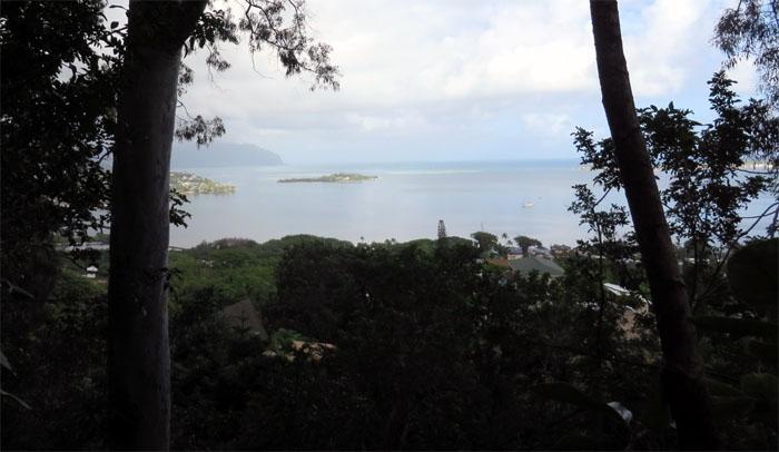 Gilligan's Island!