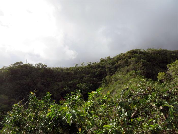 Kawaewae Ridge