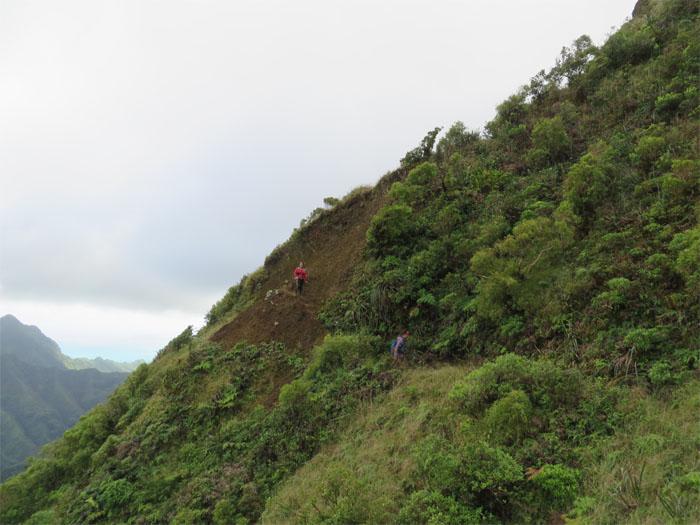 Small landslide