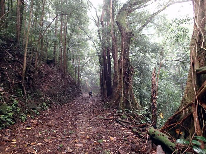 Headed into Waikane Valley