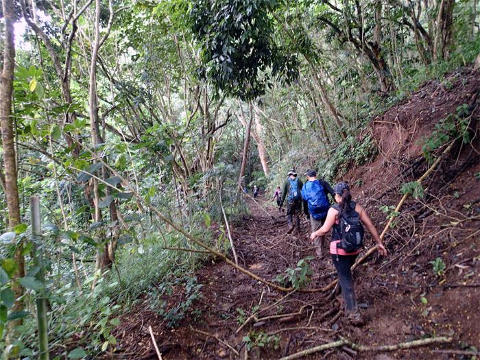 Well trodden trail