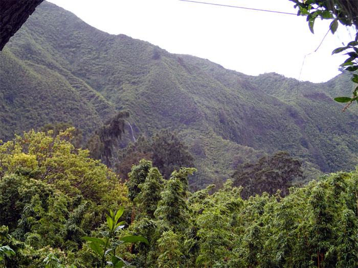 Waipuilani Falls