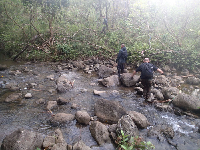 #2 stream crossing