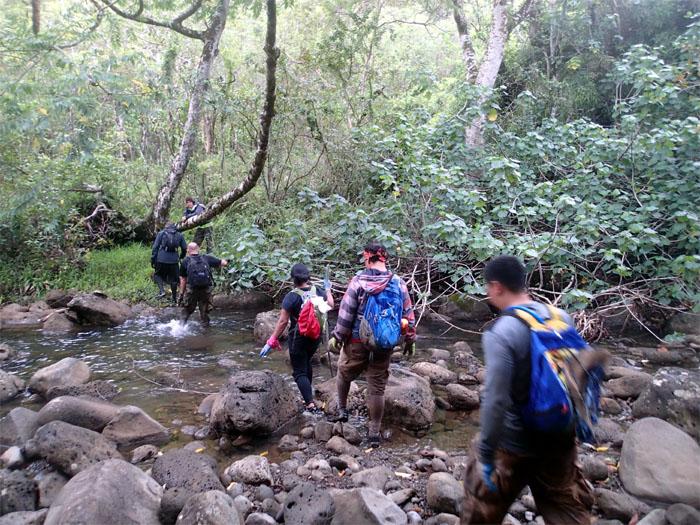 #6 stream crossing