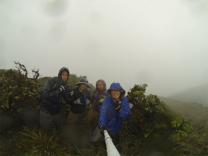 Waiahole Uka summit