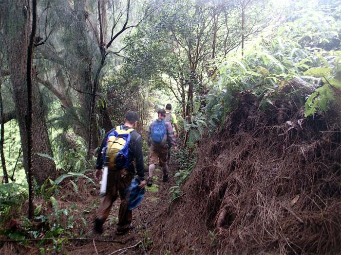 Kuolani-Waianu Trail