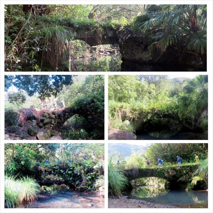 Bridges and streams
