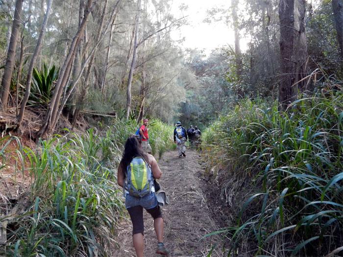Nice trail