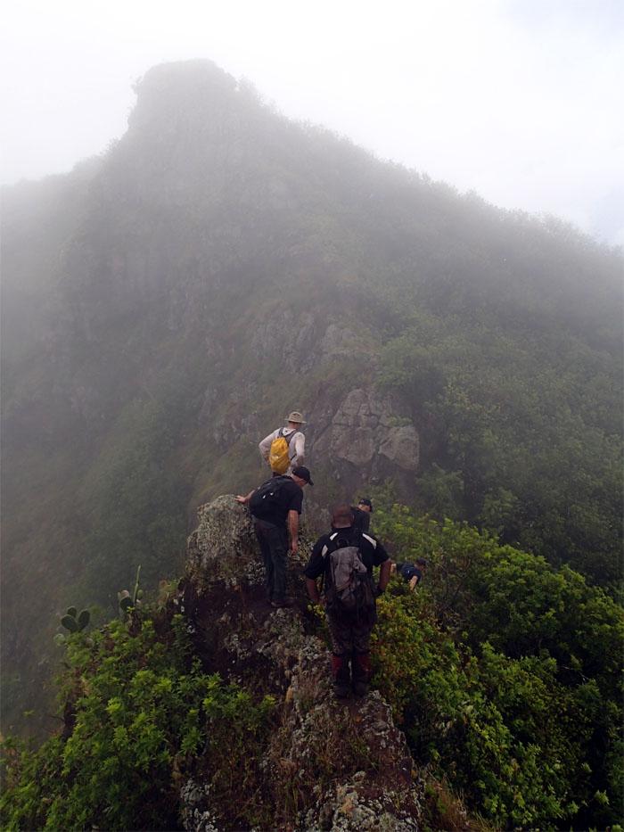More rock climbing?