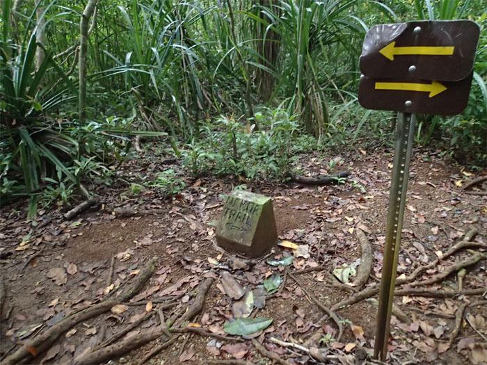 Nakoa Trail