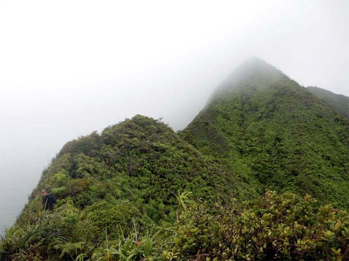 Koolau Summit Ridge Trail