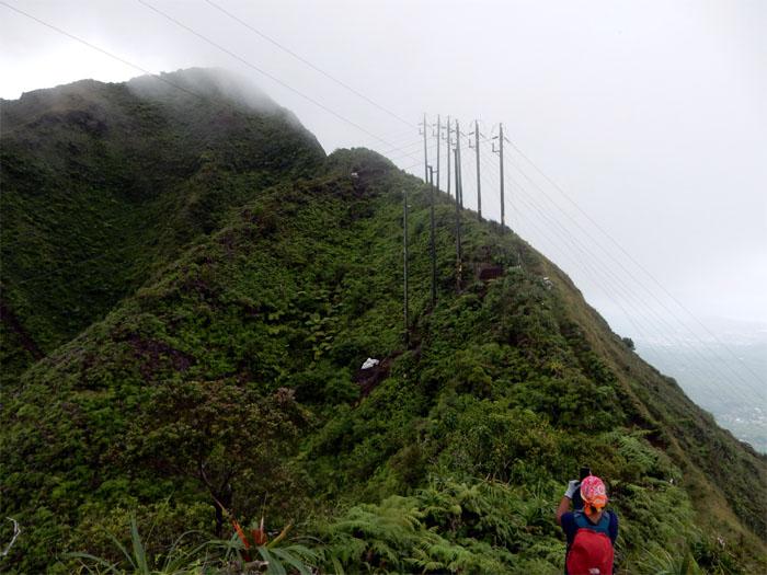 HECO power lines