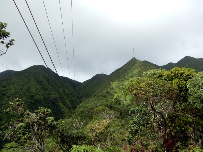 Looking back at the Ko'olaus