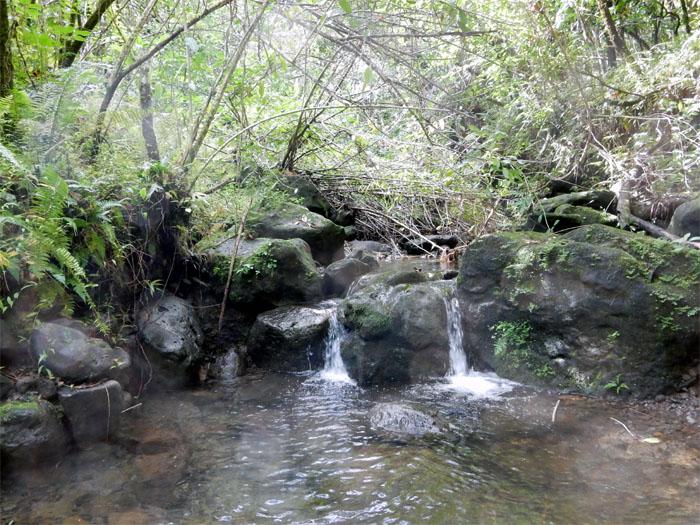 Little waterfalls