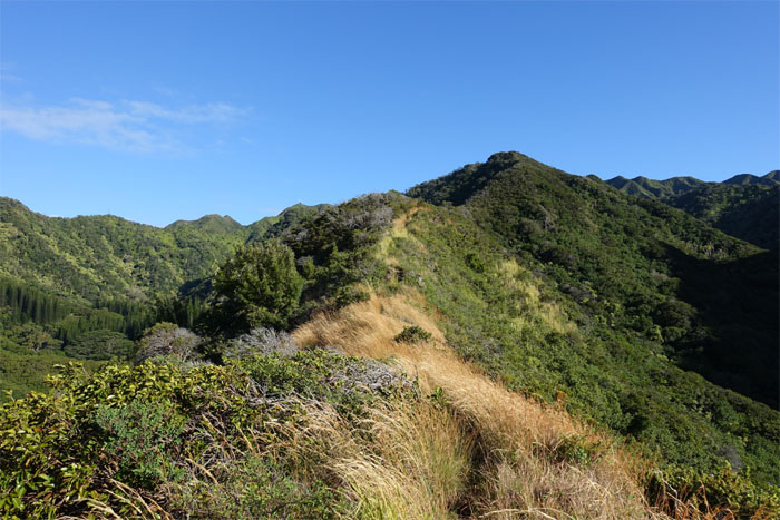 Wailupe Middle Ridge